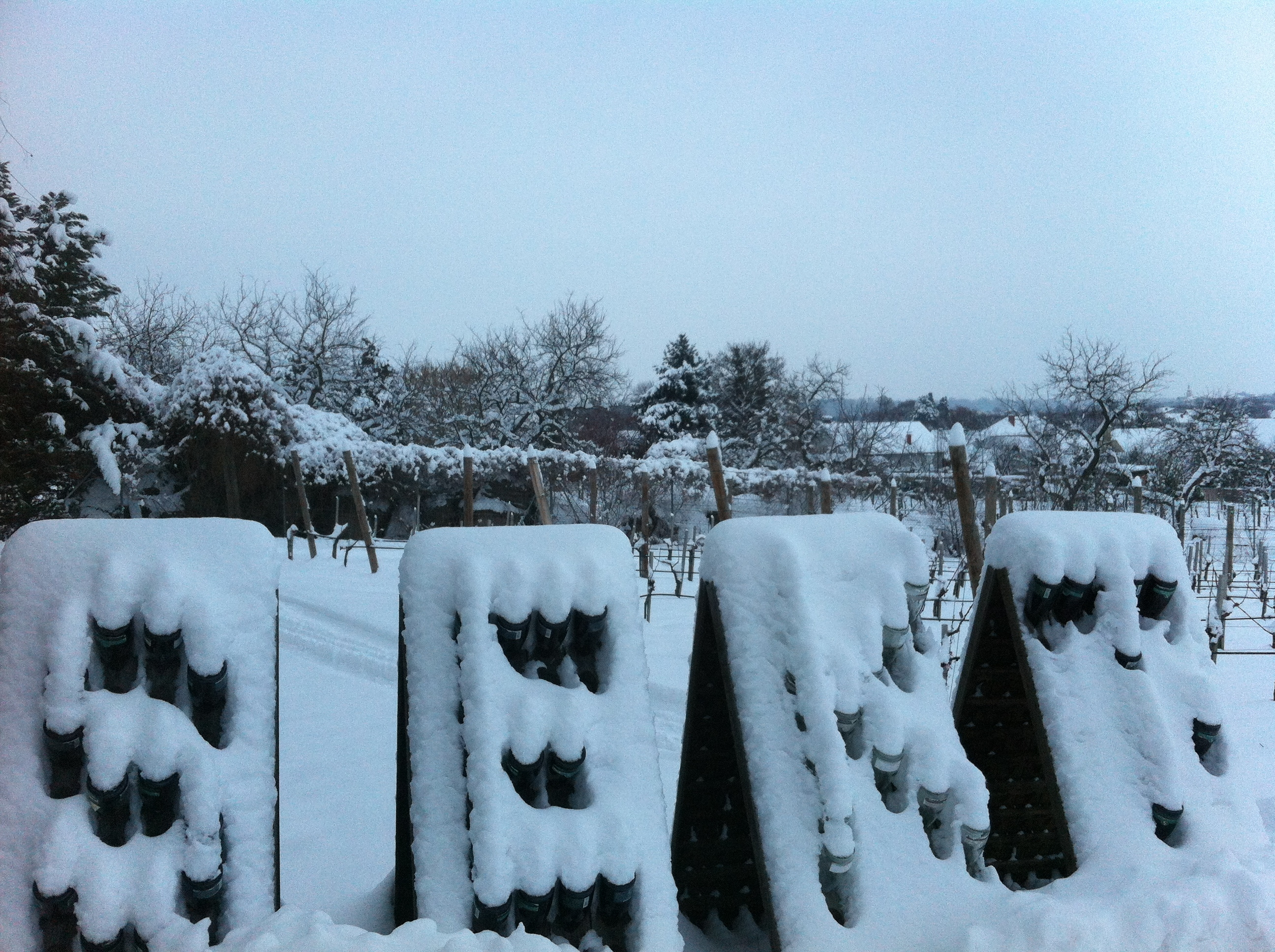 loisium sekt winter